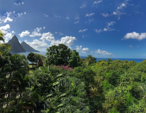 Enjoying the amazing panoramic views from the deck of the Treehouse II.