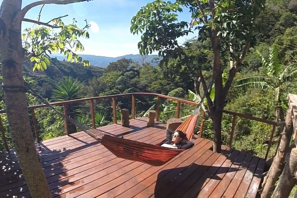 Decks with hammock.