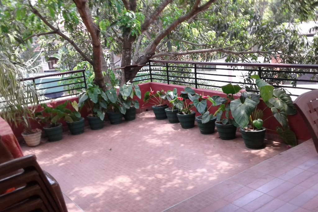 patio with potted plants on the first floor