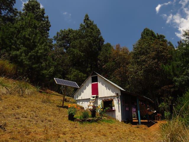 Casa de sanacion del bosque.