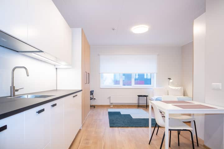 New and Stylish Studio Apartment in Mustamäe #4