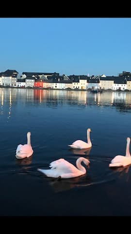 Seafront home Salthill Galway city. - Salthill - Hus