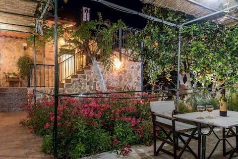 Katerina's garden 2