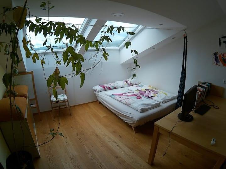 Panoramadachfenster Zimmer mit grossem Tisch