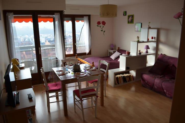 Studio 30m2 entre lac et montagne_ville_VAC/CURE - Aix-les-Bains - Apartament
