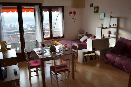 Studio 30m2 entre lac et montagne_ville_VAC/CURE - Aix-les-Bains - Apartment