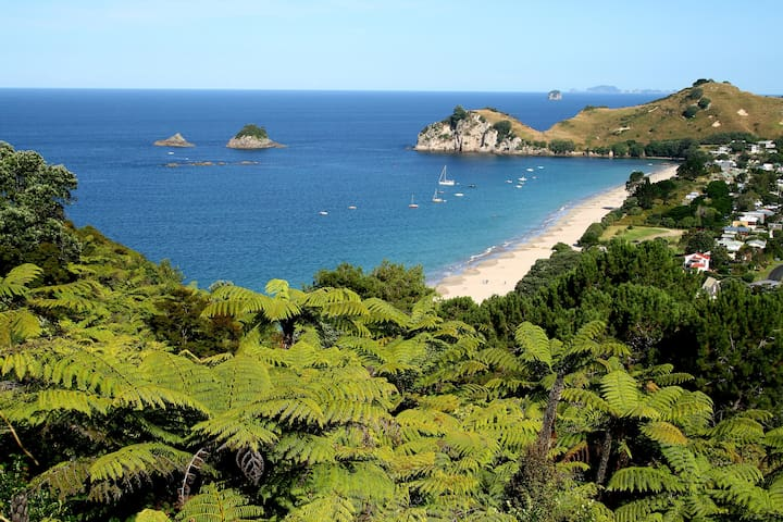 Cathedral Cove Connection