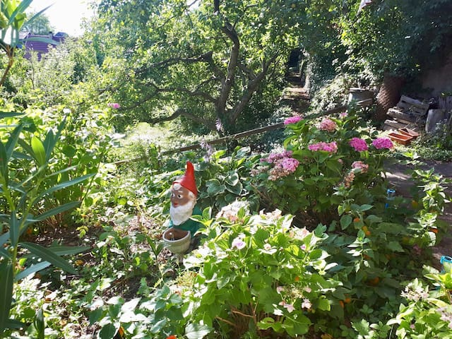 Villa IDA … a home away from home