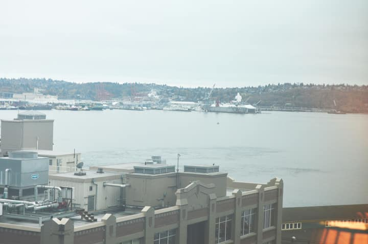 Modern Luxury Apt near Pike Place with Bay View