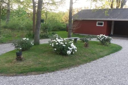 Ved Blåbjerg plantage