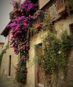 app.to vacanze La Bouganvillea - Manerba del Garda