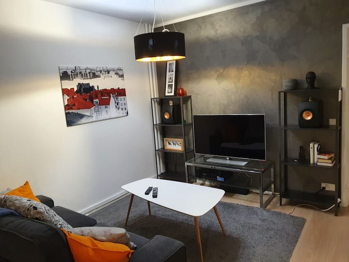 Two room apartment in city center