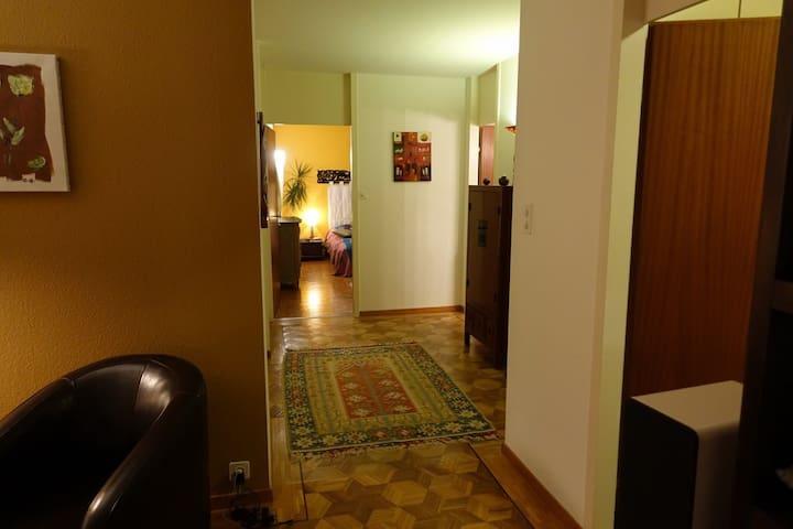 Appartement spacieux et calme - Meinier