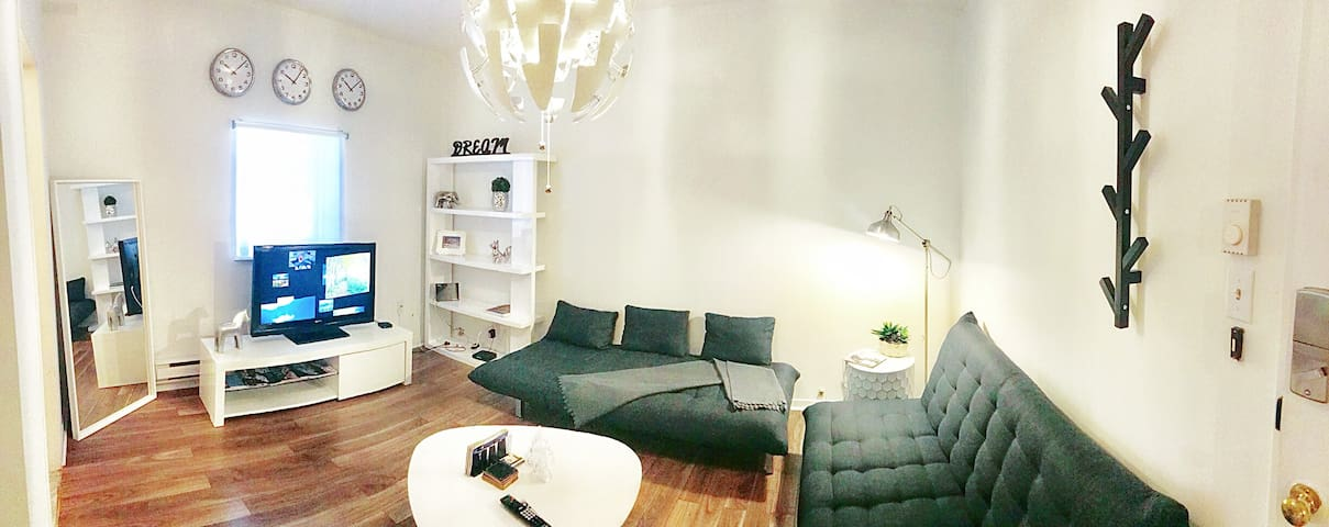 Entire apartment in the dreamy Mile-end!