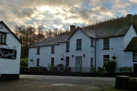 Twin en-suite & mountain views - Cwmdu - Bed & Breakfast