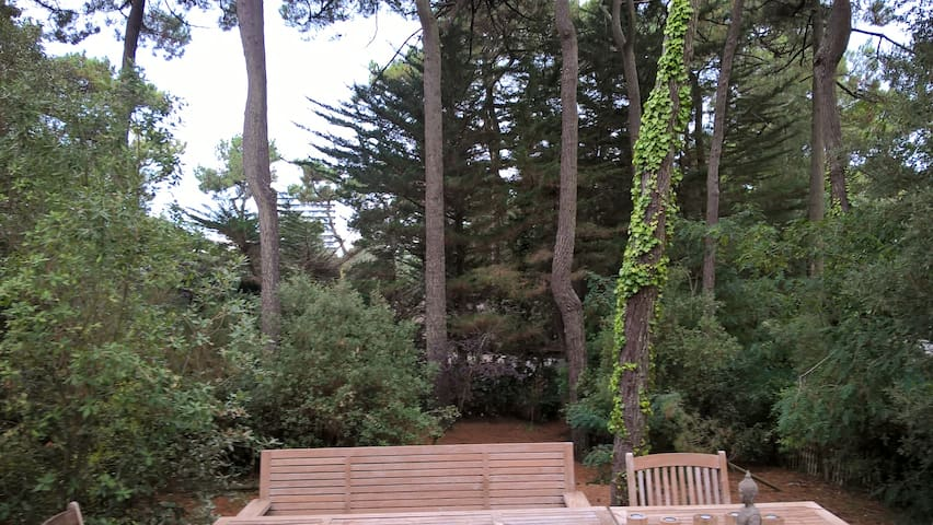 Villa pleine nature proche plage