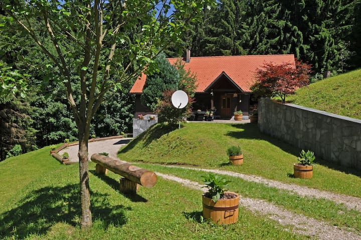 Rogla Lodge - chalet in Slovenia - Skomarje - House