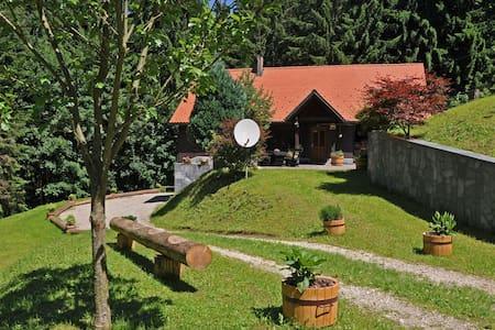 Rogla Lodge - chalet in Slovenia - Haus