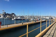 I took this photo at Newcastle harbour just down from my house!