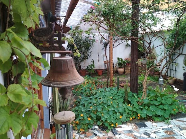 Paz y silencio. Habitación cerca de la UCAM