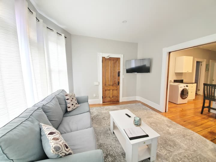 Fully Renovated 2 Bed on  Spring Street