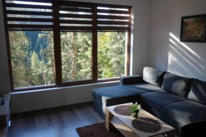 Апартамент с красив изглед към гората в центъра.