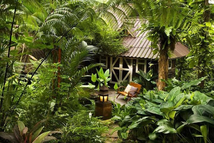 Eco-Friendly Rain Forest Resort in Phitsanulok