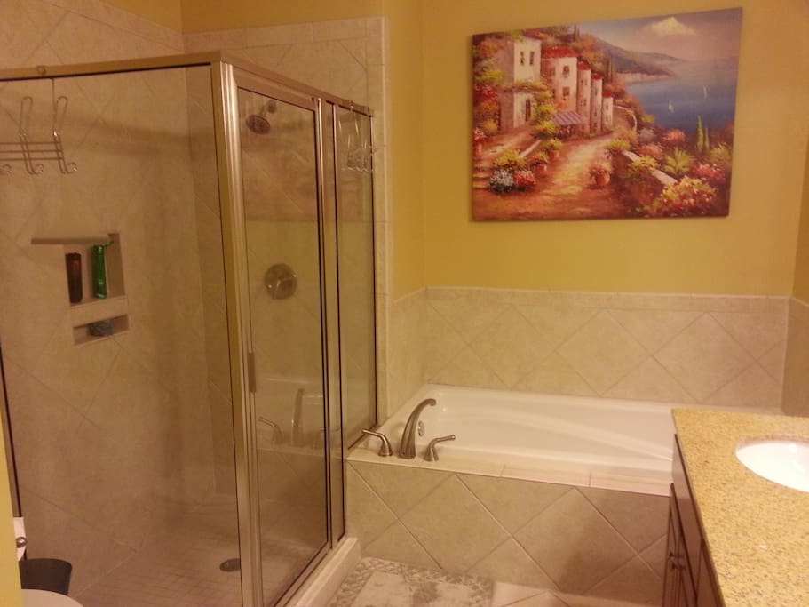 master bath shower and jetted tub