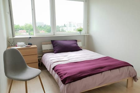 Comfortable room in Geneva with private bathroom