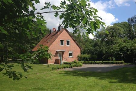 Großes Ferienhaus am See - Bispingen - Haus