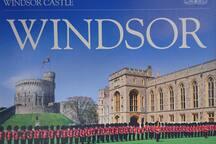 WINDSOR Center