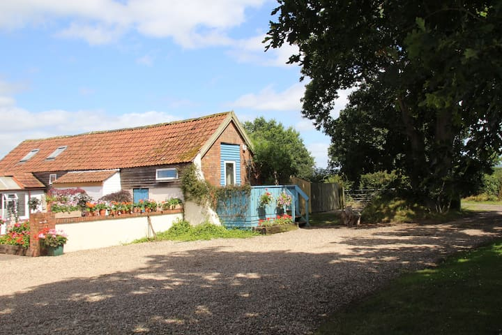 Honeysuckle Hideaway - rural Devon - Langford, Cullompton - House
