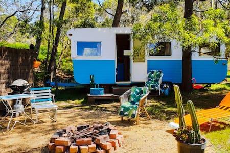 Mexican-inspired Cactus Re-Treat Caravan