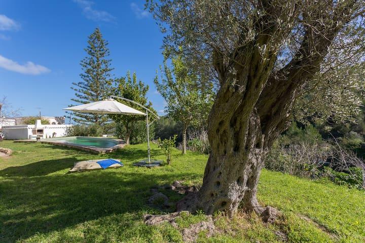Acogedor apto en el norte de Ibiza