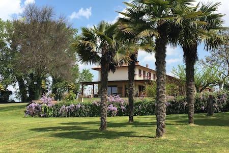 Agriturismo - Appartamento - Isola della Scala