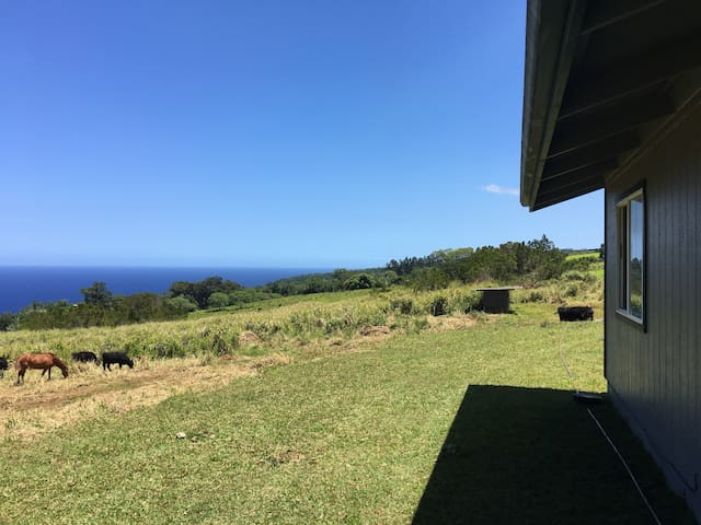 Breath-taking views, Perfect Home Retreat - Laupahoehoe - House