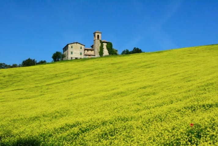 San Donato: a magical place! - Monte Cerignone - House