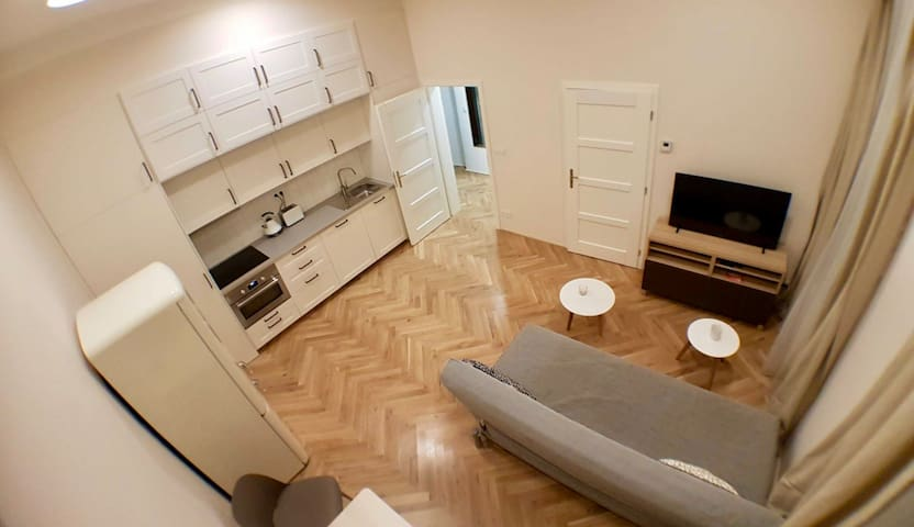 Charming new one bedroom apt. in Vinohrady