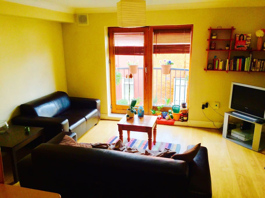 Dublin Rooms To Rent Pets Allowd