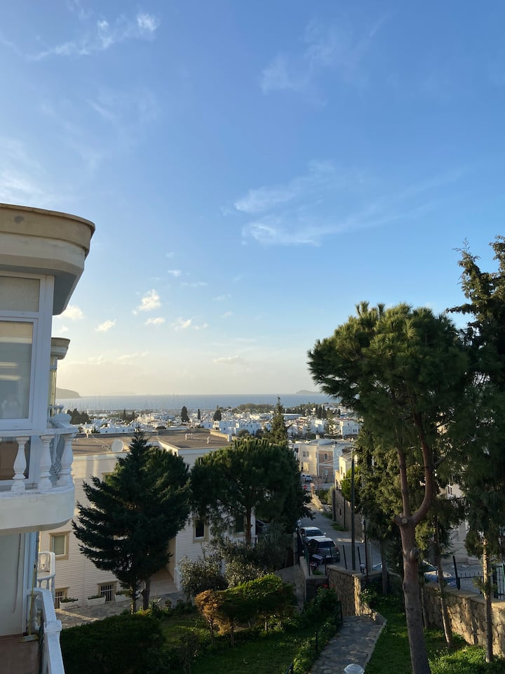 Spacious 1+1 with panoramic sea view