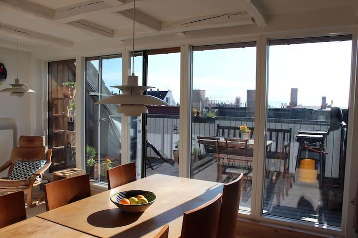 Penthouse Duplex w. Rooftop Terrace