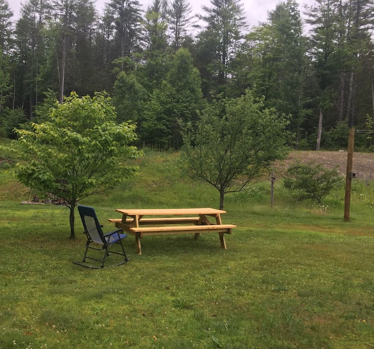 Large yard with plenty of room for badminton,... etc, with picnic table, gas barbecue grill, and fire pit.