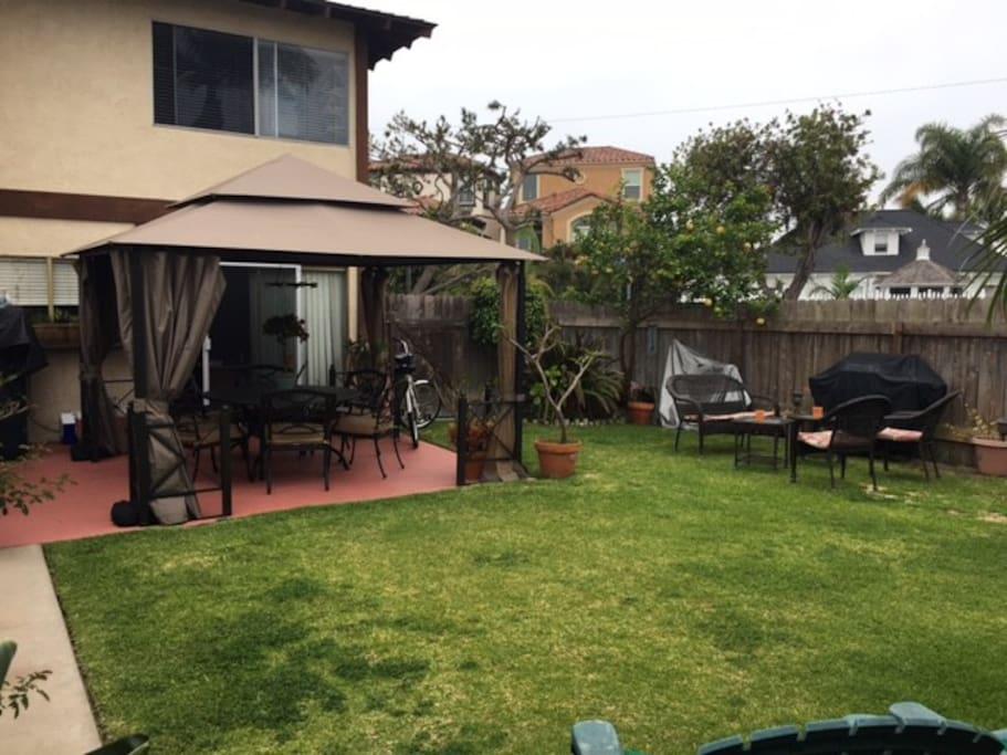 Backyard--new look!
