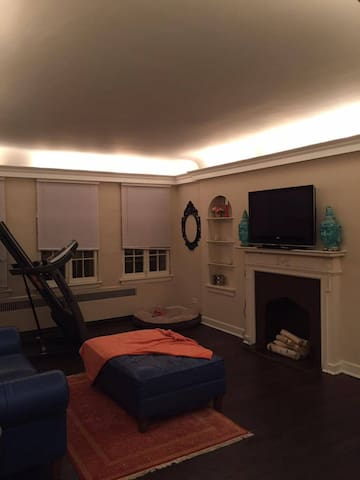 Spacious Andersonville Beauty! - Chicago - Appartement