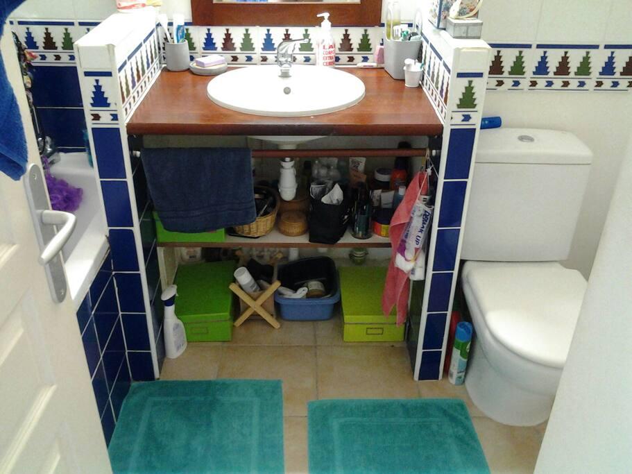 Salle de bain (baignoire) WC