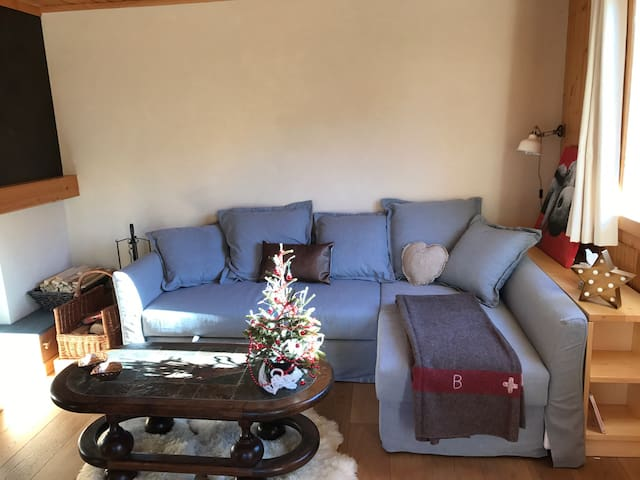Lovely apartment 15min from Gstaad - Château-d'Oex - Chalet