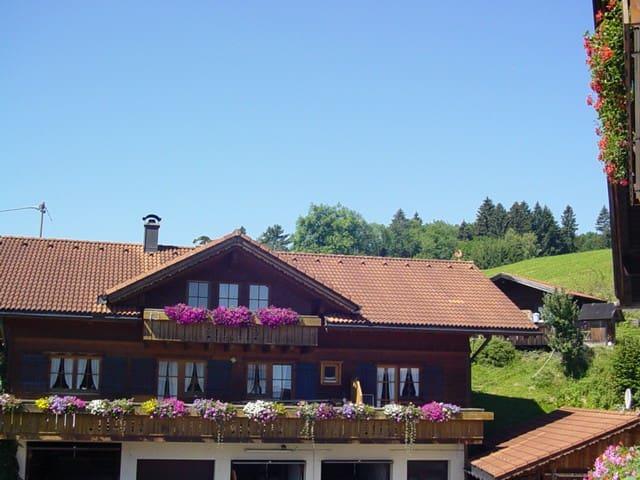 Gemütlichkeit im Holzhaus - Immenstadt im Allgäu - Appartement