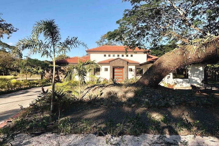 Viila Guanacaste Gold