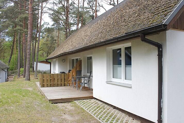 Usedomain - Doppelhaushälfte D3
