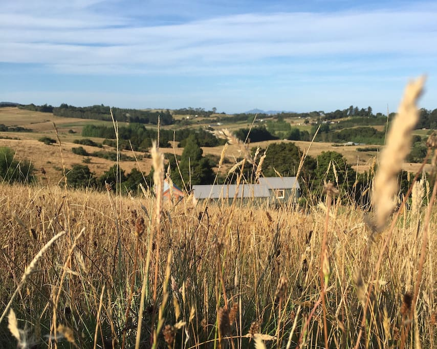 Arohanui nestles on peaceful rural land.